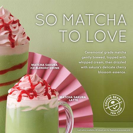 So Matcha To Love