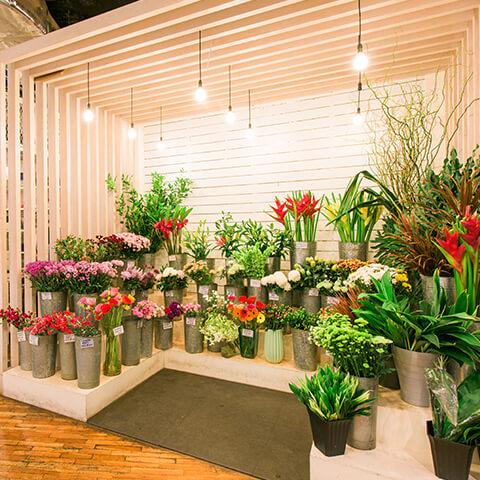 Willows A Flower Shop